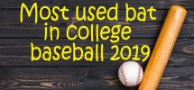 most used bat in college baseball 2019