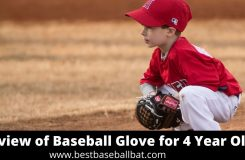 Review of Baseball Glove for 4 Year Old