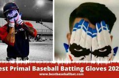Best Primal Baseball Batting Gloves 2021